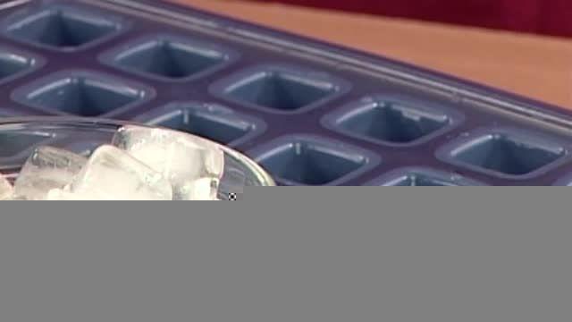 قالب یخ سیلیکونی (tescoma-ایتالیا)