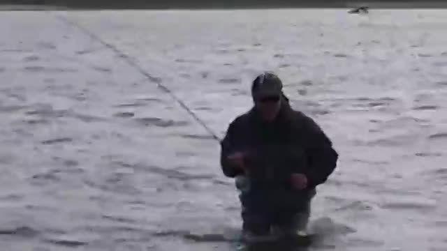 بهترین ویدئوی ماهیگیری  و نیز اموزش ماهیگیری