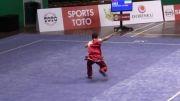 ووشو ، فرشاد عربی ، مسابقات جهانی مالزی ، مقام سوم نن چوون