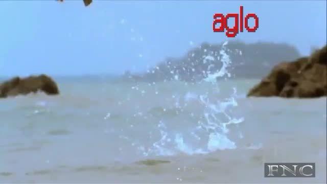 aglo=عقاب پرنده ای خطرناک است dangxera besto
