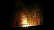آتش سوزی گسترده در آمریکا