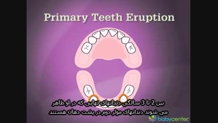 مراقبت از دهان و دندان در خارج از كشور-دكتر كرایه چیان