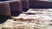 افزایش آب ورودی به سیستان ( ورودی آب به چاه نیمه )