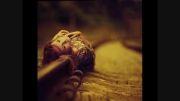 ✿آهنگ  جدید دو ســــال-مسعود سعیدی✿♫ ♪