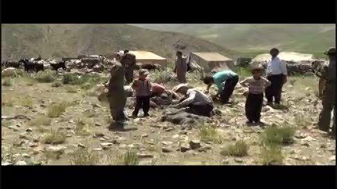 بوکس رنجر - مستند طبیعت دوای هردرد- قسمت پنجم