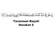 دستگاههای قرآنی(بیات حجاز نهاوند و...)حنیمزه