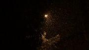 تصاویری زیبا از بارش برف در شهر ایلام