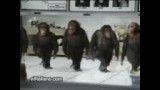 رقصید میمون ها(طنز)