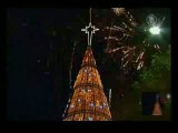 بلندترین درخت کریسمس جهان