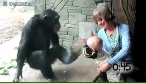کلیپ نترسیدن کودکان از حیوانات خیلی جالب