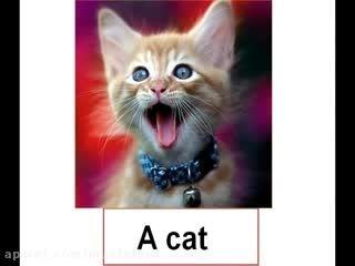 آموزش 300 کلمه زبان انگلیسی بوسیله ی تصویر