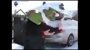 واکنش جالب میمون به نخستین برف زمستانی