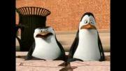 پنگوئن های ماداگاسکار-قسمت دوم