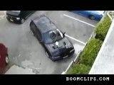 اینجوری گربه رو رو ماشین بر میداره