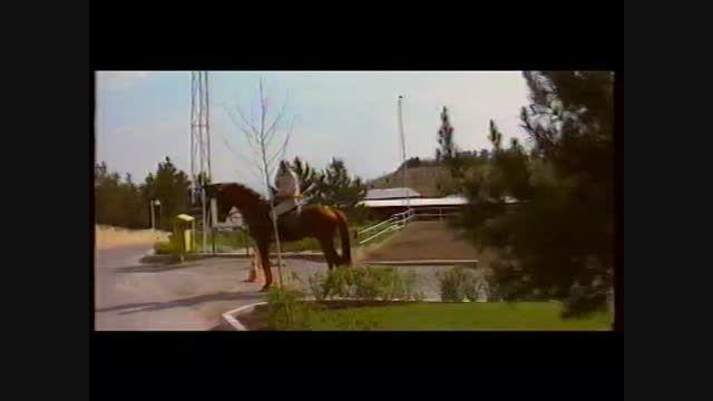 مرکز پرورش اسب و باشگاه سوارکاری پرشاسب