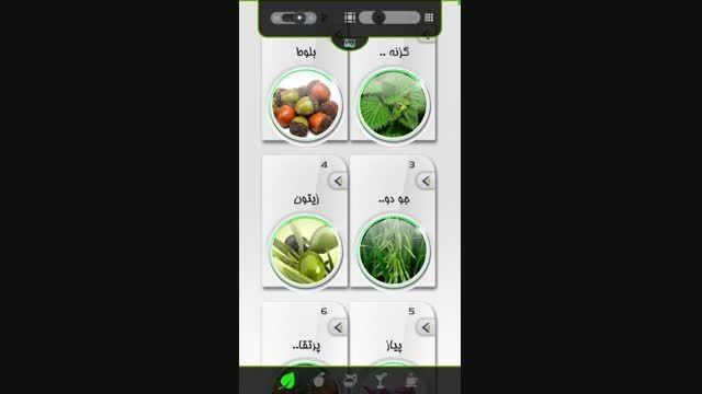 گالری تصویر اکسیر سبز