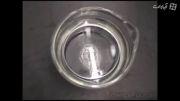 واکنش قویترین فلزهای واکنش دهنده ی قلیایی با آب