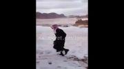 وقتی عرب برف ببینه!!!