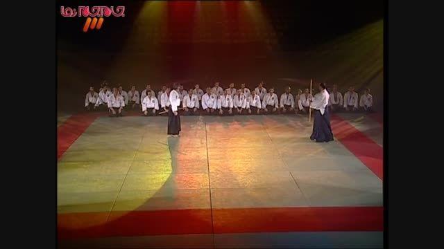 هنر دفاع شخصی فیلم کلیپ ورزش رزمی گلچین صفاسا