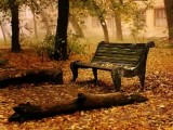بدون کلام ،پاییز