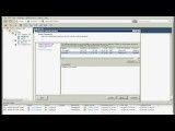 VMware Vsphere (vmotion