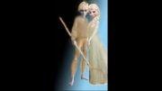 جک فراست و السا پادشاه و ملکه ی روشنایی