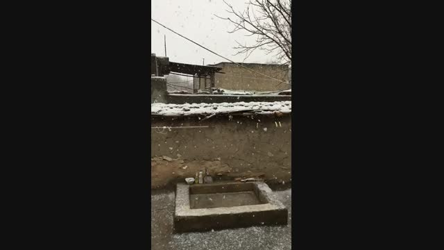 اسلوموشن بارش برف