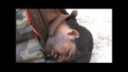 تصاویر دستگیری عامل انتحاری قبل از انفجار