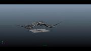 انیمیت پرواز عقاب