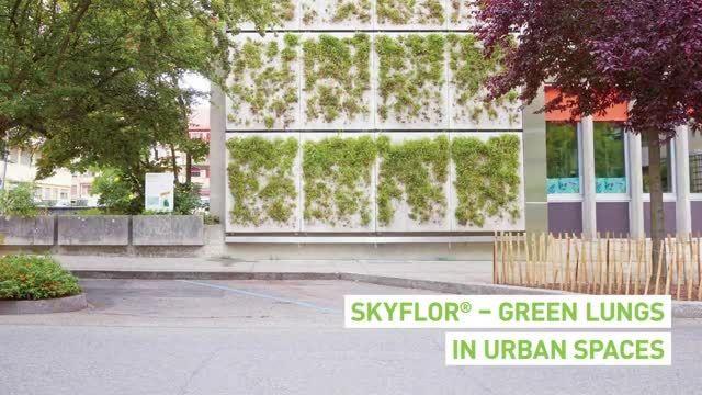 فناوری معماری دیوار سبز skyflor