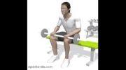 آموزش تمرین ساق پا نشسته با هالتر