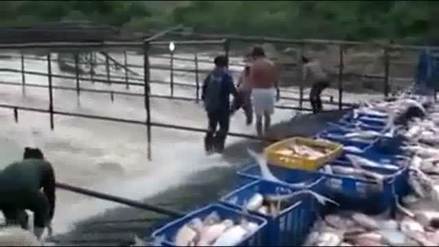 بهشت ماهیگیران