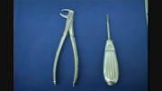 کشیدن دندان (Extraction) مولار پایین باCow horn forceps