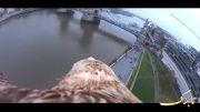 تماشای شهر بر فراز بال های عقاب