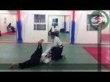 Aikido Iran Aikikai   آیکیدو   چند تکنیک زیبای دفاع شخصی