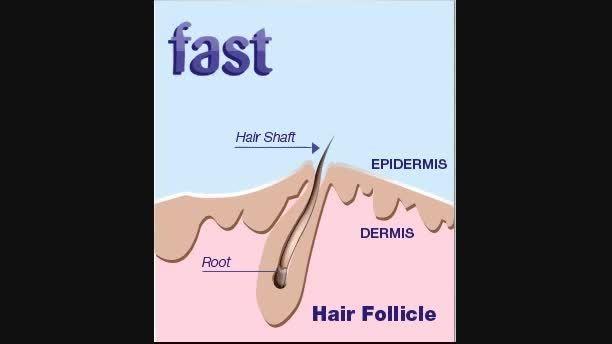 افزایش رشد مو با شامپو فست - 07132339412