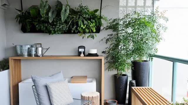 تاثیر شگرفت گل و گیاه در طراحی داخلی خانه شما