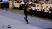 دهمین دوره مسابقات جهانی ووشو - گوئن شو - مدال طلا