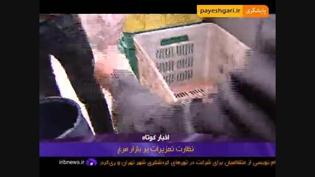 نظارت تعزیرات بر بازار مرغ