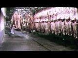 از زیبا ترین سخنرانی های تاریخ توسط چارلی چاپلین انسانیت