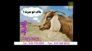 ویدیو خیلی خنده دار از مهران مدیری آخره خنده