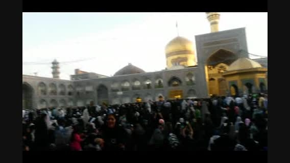 اینجا مشهد- حرم امام رضا علیه السلام
