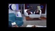 پرستوی ایمن در قاب تلویزیون
