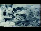مستند کوچ عشایر ایران در سال 1302-بخش دوم
