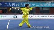 ووشو،مسابقات فینال داخلی چین 2013، جی ین شو 5