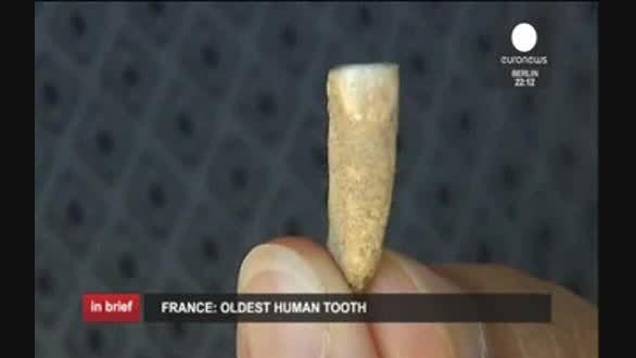 کشف قدیمی ترین دندان انسان