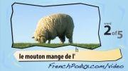 آموزش فرانسه با ویدیو 2 (حیوانات مزرعه)