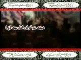 غمی ندارم کربلا دارم | کربلایی مهدی تقی خانی