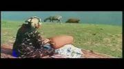 نماهنگ شاد ایران من ( خواننده: علیرضا افتخاری)