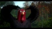 پرندگان رقاص(خیییییییلی خنده دار)